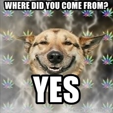 Original Stoner Dog - where did you come from? yes