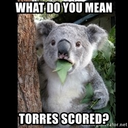 Koala can't believe it - what do you mean torres scored?