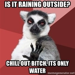 Chill Out Lemur - is it raining outside? chill out bitch, its only water