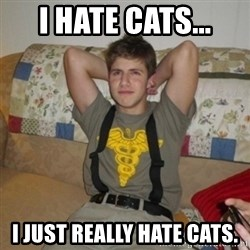 Jake Bell: Stoner - I hate cats... i just really hate cats.