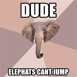 fat Elephant - dude elephats cant jump