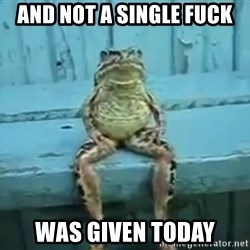 sittingfrog - and not a single fuck was given today