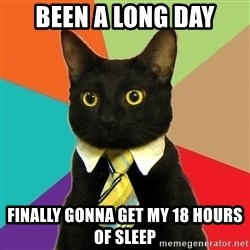 Business Cat - Been a long day finally gonna get my 18 hours of sleep