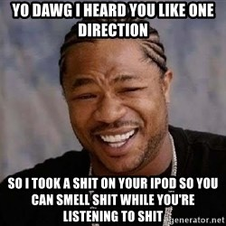 Yo Dawg - yo dawg i heard you like one direction so i took a shit on your ipod so you can smell shit while you're listening to shit