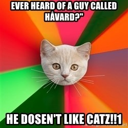 "Advice Cat - ever heard of a guy called håvard?"" he dosen't like catz!!1"