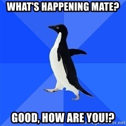 Socially Awkward Penguin - what's happening mate? good, how are you!?
