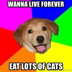 Advice Dog - wanna live forever eat lots of cats