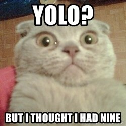 GEEZUS cat - Yolo? but i thought i had nine