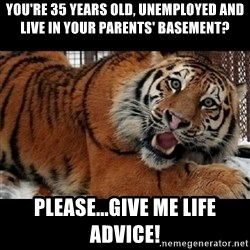 Sarcasm Tiger - you're 35 years old, unemployed and live in your parents' basement? Please...Give me life ADVICE!