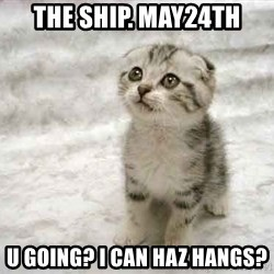 The Favre Kitten - The Ship. may24th u going? i Can Haz hangs?