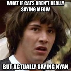 Conspiracy Keanu - What if cats aren't really saying meow but actually saying nyan