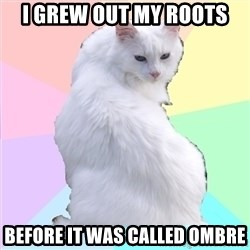 Beauty Addict Kitty - i grew out my roots before it was called ombre