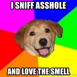 Advice Dog - I sniff asshole and love the smell