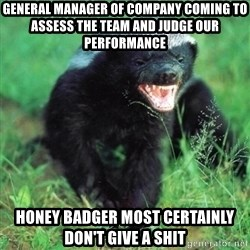 Honey Badger Actual - General manager of company coming to assess the team and judge our performance honey badger most certainly don't give a shit