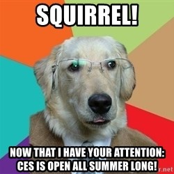 Business Dog - squirrel! now that i have your attention: CES is open all summer long!