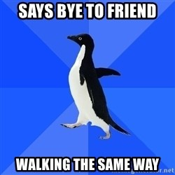 Socially Awkward Penguin - Says bye to friend walking the same way