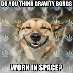 Stoner Dog - DO YOU THINK GRAVITY BONGS WORK IN SPACE?