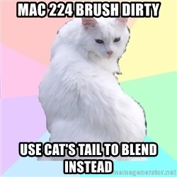 Beauty Addict Kitty - MAC 224 brush dirty Use cat's tail to blend instead