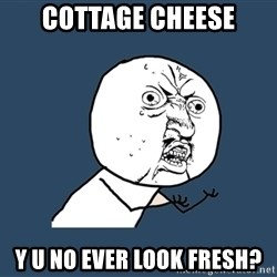 Y U No - cottage cheese y u no ever look fresh?