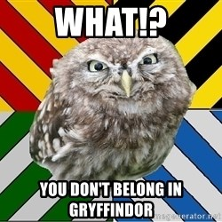 JEALOUS POTTEROMAN - wHAT!? YOU DON'T BELONG IN GRYFFINDOR
