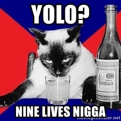 Alco-cat - Yolo? Nine Lives nigga
