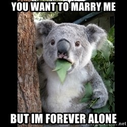Koala can't believe it - you want to marry me but im forever alone