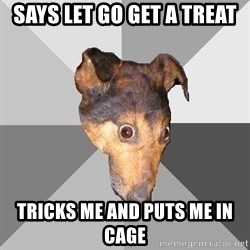 Depressed Dog - says let go get a treat tricks me and puts me in cage