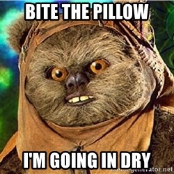Rape Ewok - Bite the pillow I'm going in dry
