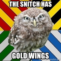 JEALOUS POTTEROMAN - The snitch has gold wings