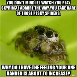 The Spider Bro - You don't mind if I watch you play skyrim? I admire the way you take care of those pesky spiders. Why do I have the feeling your one handed is about to increase?