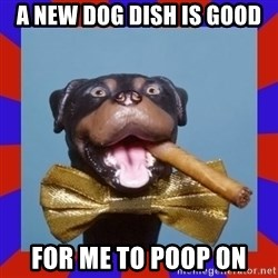 Triumph the Insult Comic Dog - a new dog dish is good for me to poop on
