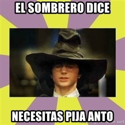 Harry Potter Sorting Hat - el sombrero dice necesitas pija anto