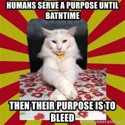 Dictator Cat - humans serve a purpose until bathtime then their purpose is to bleed