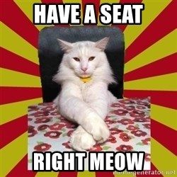 Dictator Cat - have a seat right meow