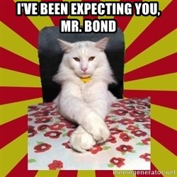 Dictator Cat - i've been expecting you,     mr. bond