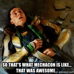 loki down - so that's what mechacon is like... that was awesome...