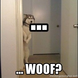 Lucho - ... ... WoOf?