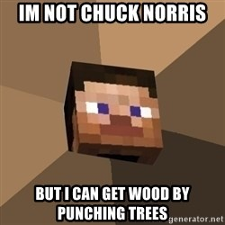Minecrafty - iM NOT CHUCK NORRIS bUT i CAN gET WOOD BY PUNCHING TREES