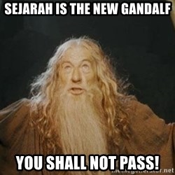 You shall not pass - Sejarah is the new gandalf YOU SHALL NOT PASS!