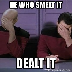 Doublefacepalm - He who smelt it Dealt it