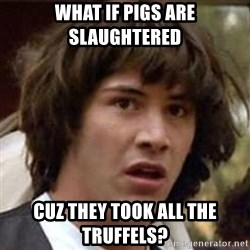 Conspiracy Keanu - WHAT IF PIGS ARE SLAUGHTERED  CUZ THEY TOOK ALL THE TRuffels?