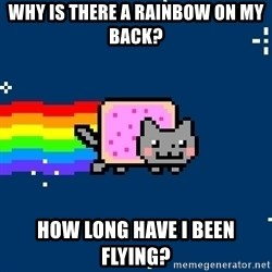 Nyancat - why is there a rainbow on my back? how long have i been flying?