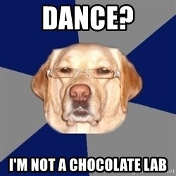 Racist Dog - Dance? I'm not a chocolate lab