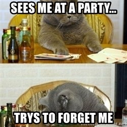 Poker Cat - Sees me at a party... TrYs to FoRget me