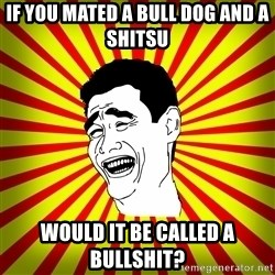 Yao Ming trollface - If you mated a bull dog and a shitsu would it be called a bullshit?