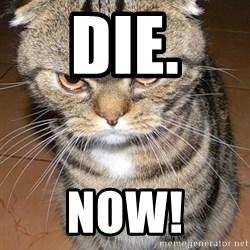 angry cat 2 - Die. Now!