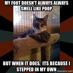 The Most Interesting Cat in the World - my foot doesn't always always smell like poop but when it does,  its because i stepped in my own