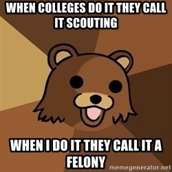 Pedobear - When colleges do it they call it scouting when i do it they call it a felony