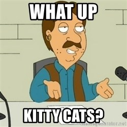 Family Guy Bruce - what up kitty cats?