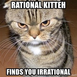 angry cat 2 - Rational Kitteh Finds you irrational